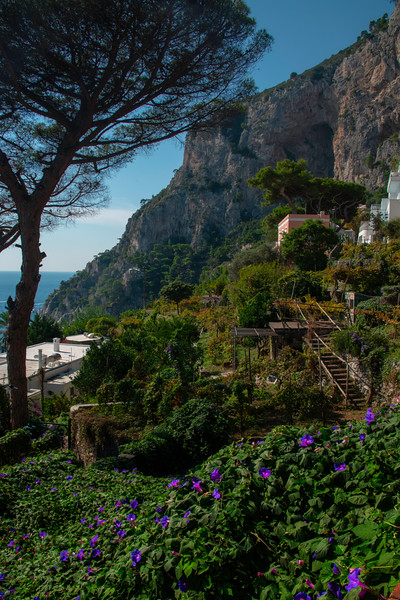 Capri_32 Bay Of Naples, Capri Island, Italy