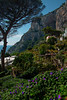 Capri_32 Bay Of Naples, Capri Island, Italy