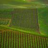 Sicily_Alcamo_25