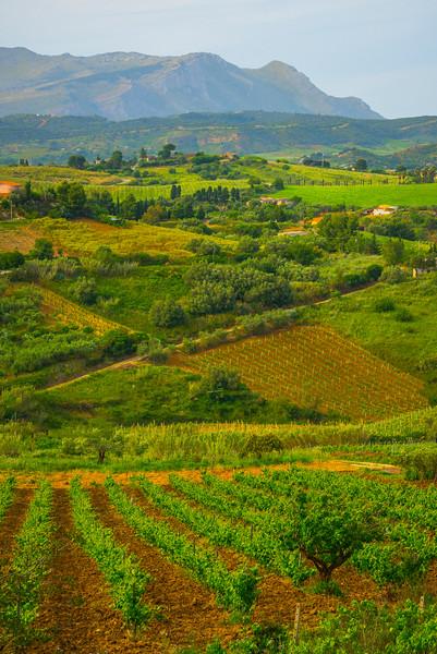 Sicily_Segesta_25