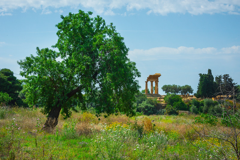 Agrigento_The Valley of the Temples_12