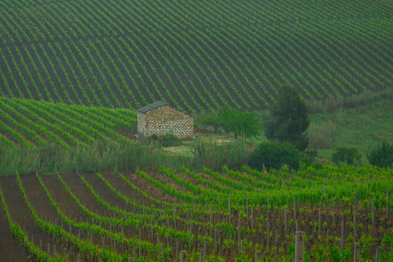 Sicily_Alcamo_34