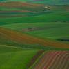 Sicily_Segesta_20