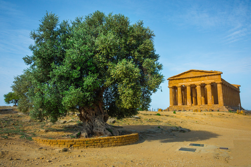 Agrigento_The Valley of the Temples_3