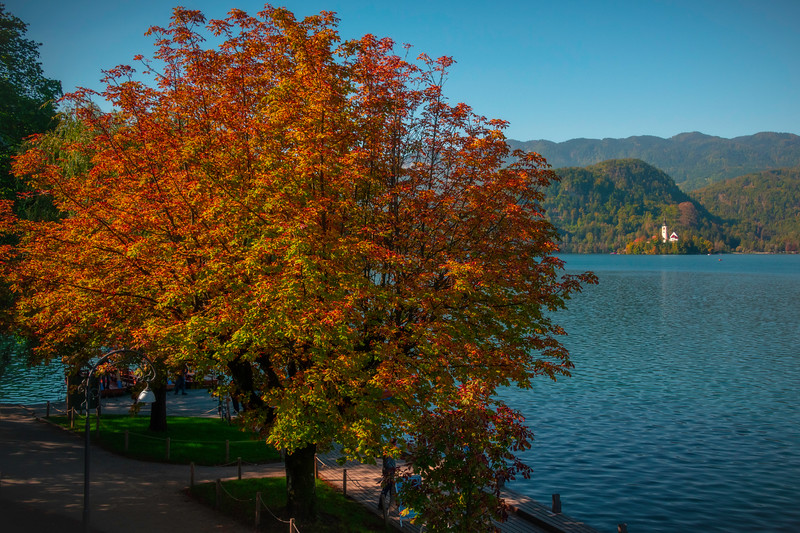 Lake Bled Sea Wall In Autumn - Lake Bled, Bled, Slovenia