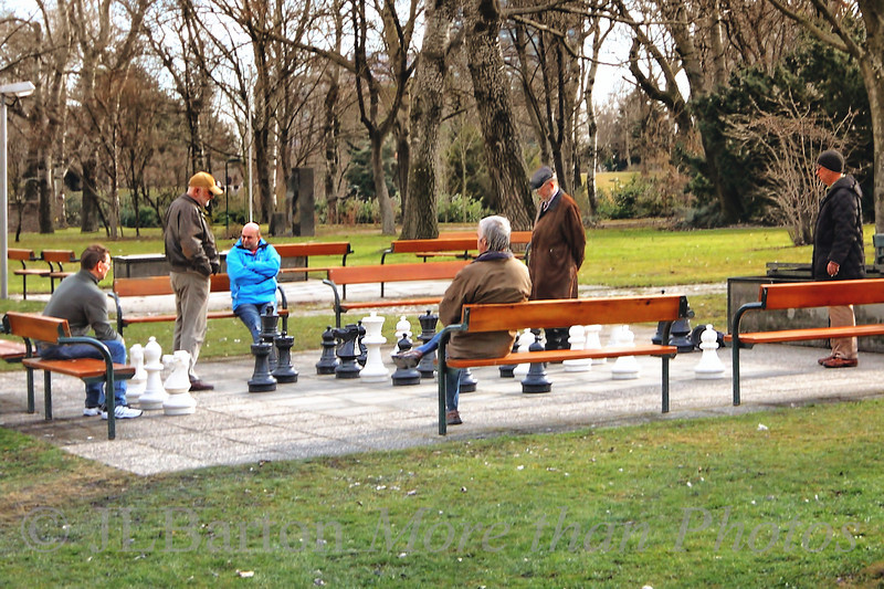 Dedication 2011-02-10  The unseasonably warm weather has continued, and the chess players are out.  Perhaps fewer watchers than in the summer, but the games continue.  Here in the Danube Park in Vienna's 22nd district.  Thanks for your comments on my Belvedere shot.