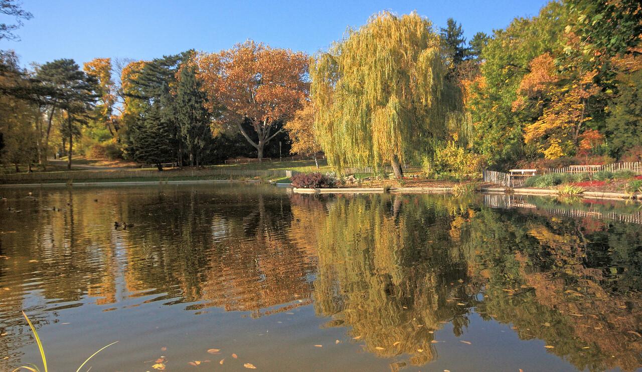 Türkenschanzpark - The park has three different ponds.