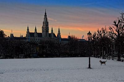 Vienna Evening