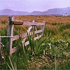 South Uist. Outer Hebrides, Scotland. July, 1989.