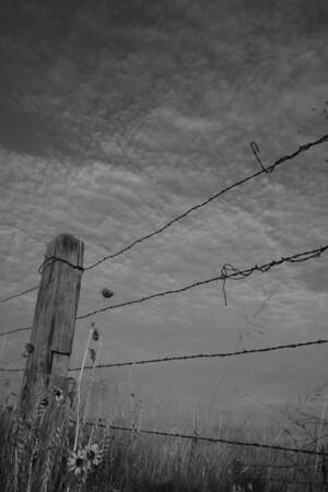 Along highway 70, between Portales and Elida, NM