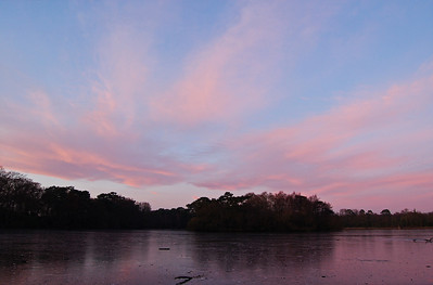 Colours starting to develop over frozen Hartsholme Lake