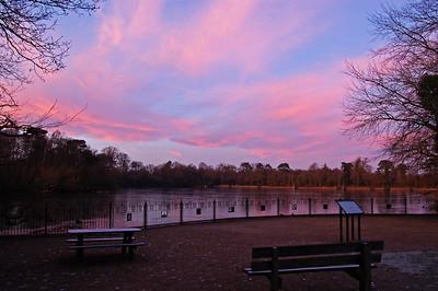 Hartsholme Lake picnic area