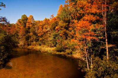 Turkey Creek in Fall Color