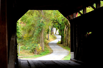 Pathway to Beauty