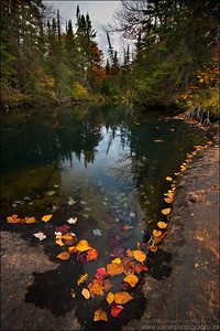 Chikanishing Creek, Killarney Provincial Park, Ontario.