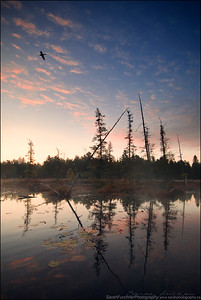 Killarney Provincial Park, Ontario
