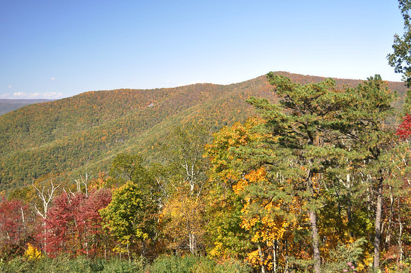 Fall 2011 Blue Ridge