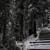 51  G Snowy Larch Mountain Summit Stairs