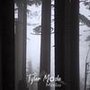 114  G Foggy Trees