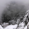 76  G Snowy Larch Mountain Summit View V