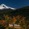 104  G Mt  Hood and Fall Colors