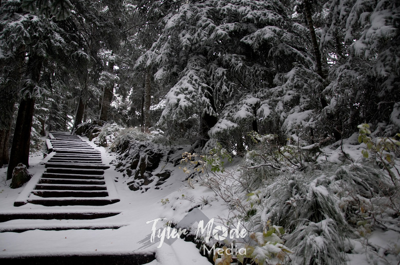 52  G Snowy Larch Mountain Summit Stairs