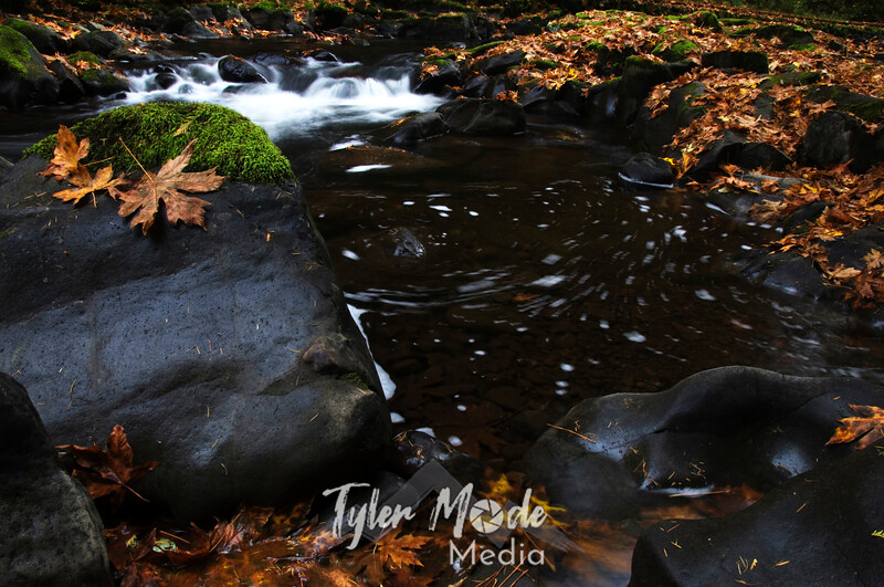 48  G Cedar Creek