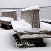 78  G Snowy Larch Mountain Summit Benches