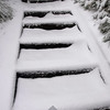 72  G Snowy Larch Mountain Summit Stairs V