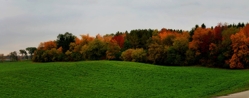 Panoramic Fall Landscape