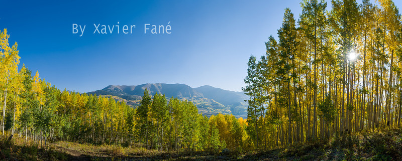 Aspen panorama on the east side of Snodgrass Mtn.