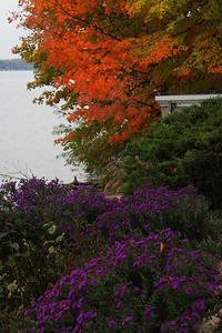 Color On The Lake