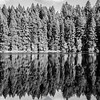 42  G Lake Reflections BW V