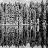 42  G Lake Reflections BW V