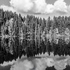 51  G Lake Reflections BW V