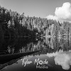 48  G Lake Reflections BW