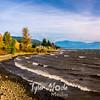 19  G Windy Columbia River