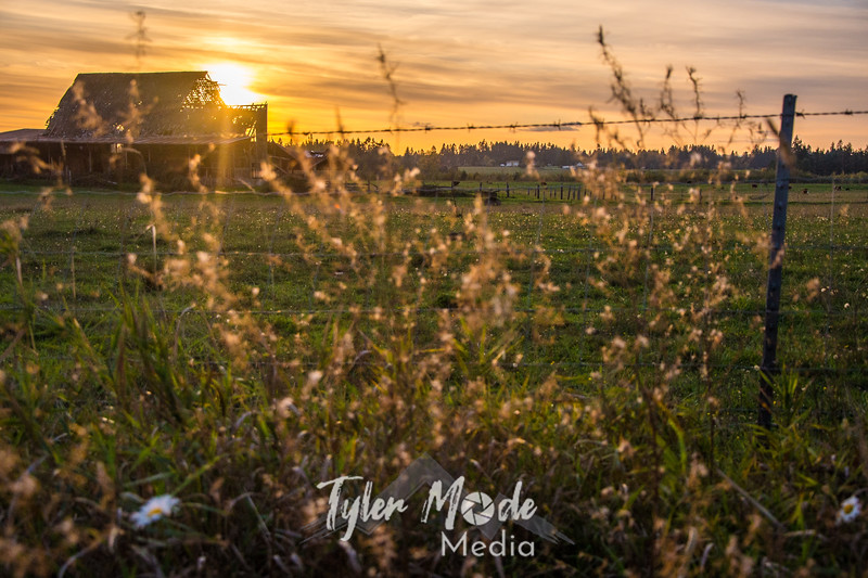 5  G Barn Sunset Wide