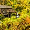 54  Grist Mill Trail