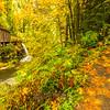 47  Grist Mill Trail