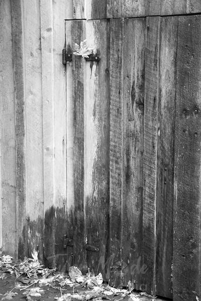69  Grist Mill Leaf Door BW V