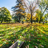 6  Cemetery Wide Grave V