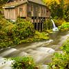 59  Grist Mill V