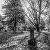 9  Cemetery Wide Grave BW V