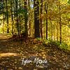 9  G Lucia Falls in Fall