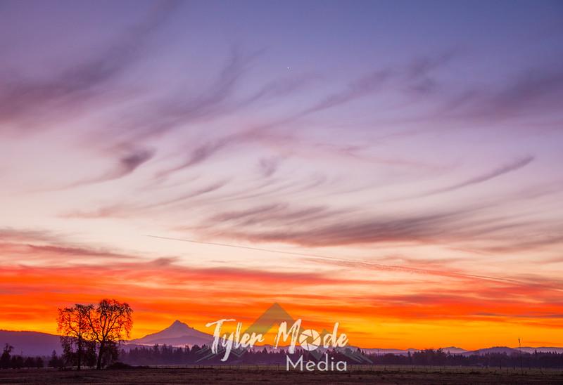 2  G November Sunrise Hood