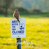 83  G Ridgefield WR Bird