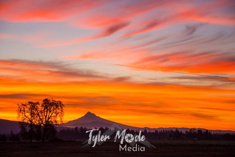 9  G November Sunrise Hood