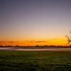 12  G Misty Field Tree Sunset Wide