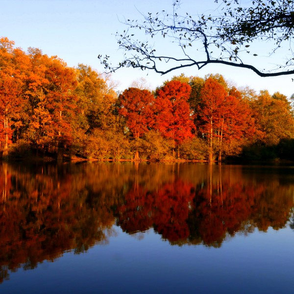 Tubbs Creek, Arkansas
